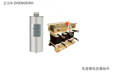 电容器电抗器组件 C&L